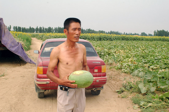 路过瓜地,瓜农送西瓜给我们吃 / Passing through the melon field and we were treated to a watermelon