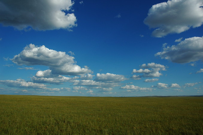 The general view - vast grassland with beautiful sky