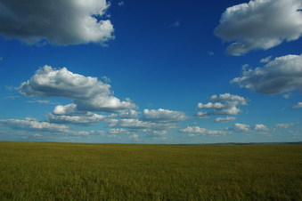 #1: The general view - vast grassland with beautiful sky