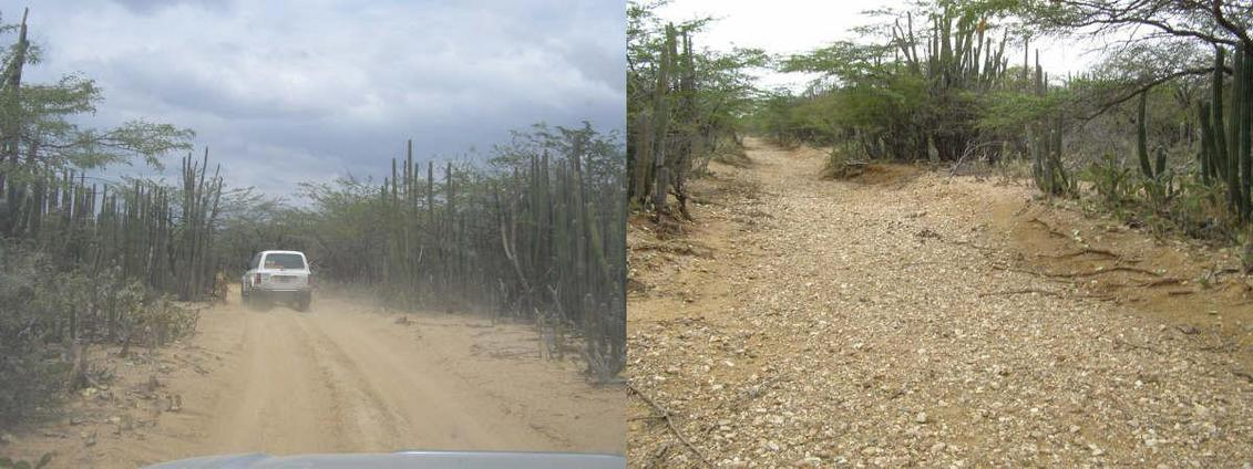 WE USED SANDY DIRTY ROADS AND DRY RIVER BEDS TO APROACH CP