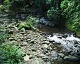 #3: a beautiful stream