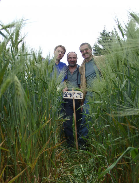 Martin, Klaus & Hans in the grain field