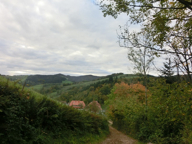 Landschaft gen Nord-West - Landscape towards northwest