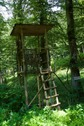 #8: A hunting blind, 140 m from the point