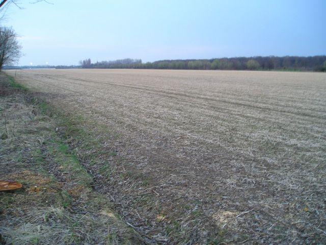 Approaching the confluence