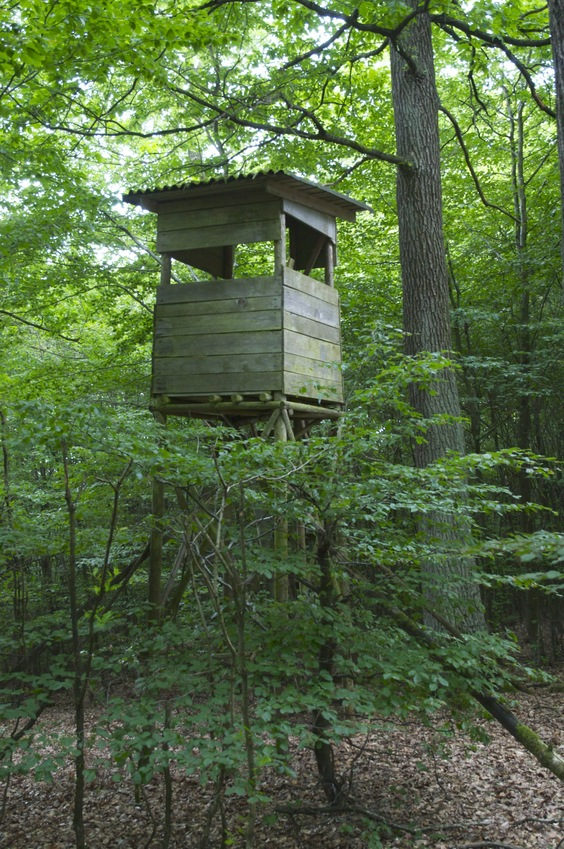 A hunting blind, seen near the confluence point.