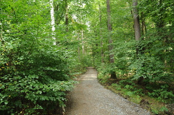 #1: The confleunce area with a hiking trail leading to the CP