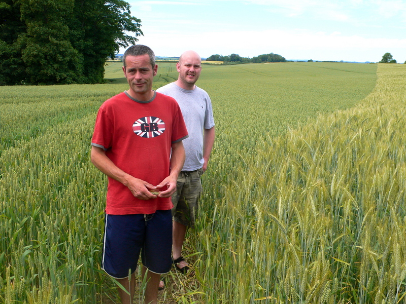 Sean and Randy Inspecting The Crop