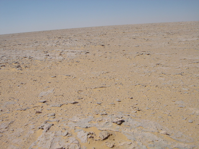 General view of the point showing the roughness of the terrain