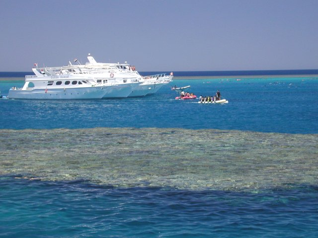 This special place is being overrun. From just 1.67 km to the south of the DC you can see five moored day boats. There are over 115 snorkelers in the water chasing the pod of 50 dolphins from one side of the ši`b (reef) to the other.
