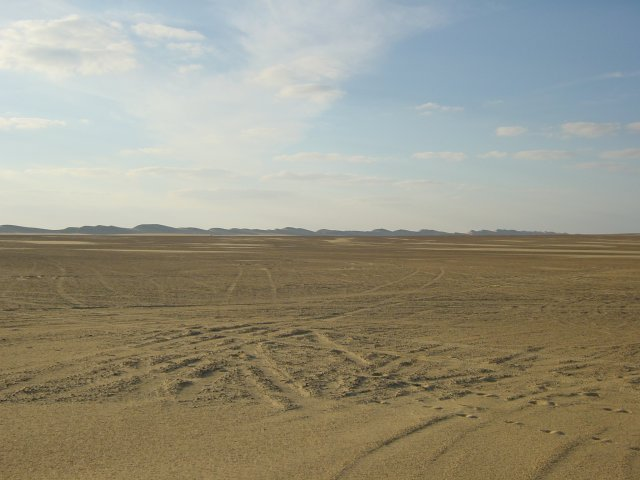 Sand Plain Discovered!