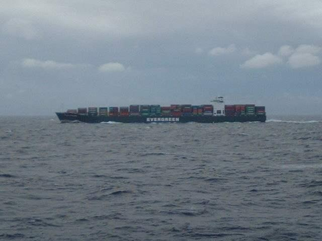 "An ""Evergreen"" container liner from Taiwan"