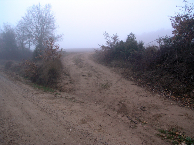 A track leaves the dirt road about 140 m from the confluence