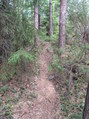 #4: A very narrow trail passes within 10 m of the point