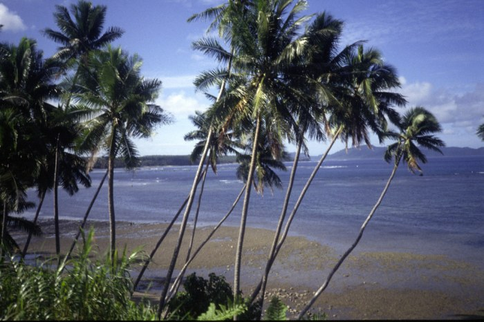 On the island of Taveuni