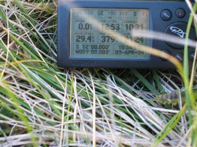 View of the GPS at confluence