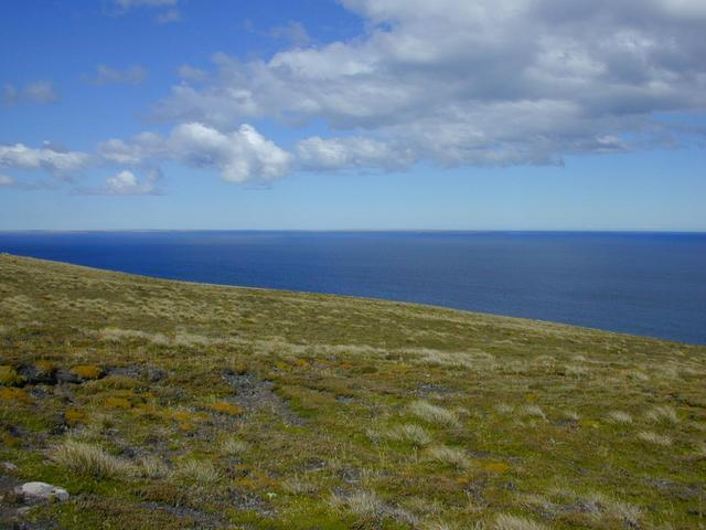 How the confluence looks: a gentle mossy, grassy slope with the South Atlantic as a backdrop.  In the distance to the southeast Lafonia (East Falkland) is just barely visible on the horizon.