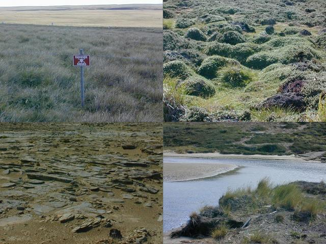 Varying terrain and obstacles, clockwise from upper left:  minefield  fence, hummocky ground, saltwater creek, Mars-like landscape.
