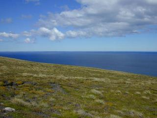 #1: How the confluence looks: a gentle mossy, grassy slope with the South Atlantic as a backdrop.  In the distance to the southeast Lafonia (East Falkland) is just barely visible on the horizon.