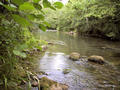 #4: The Cernon stream nearby