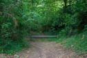 #9: Where the residential street ends, and the forest path begins
