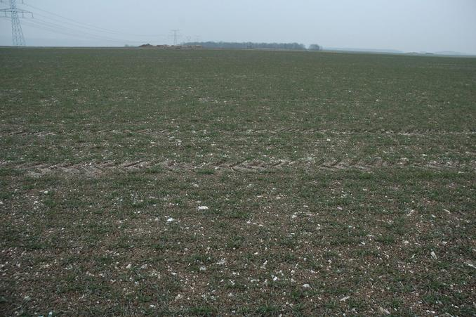 Conflunce in a newly planted wheat field - looking toward East