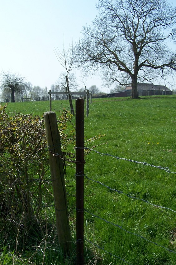 Closed entry to the meadow (view towards SW)