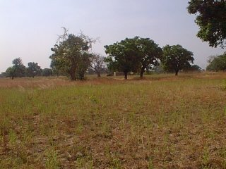 #1: Looking southwest towards a house in Ghana