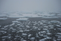 #8: Pack ice edge 50 km WSW of confluence