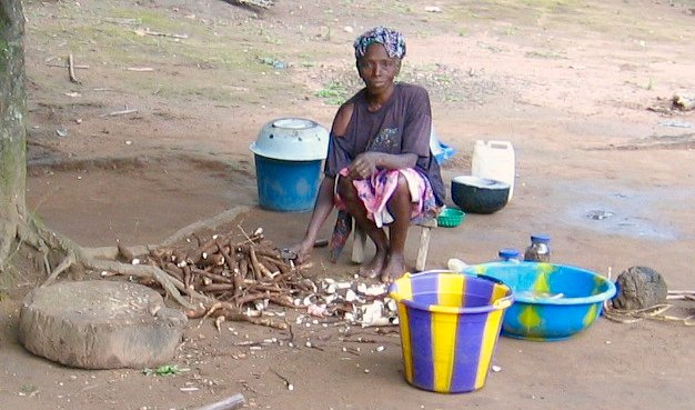 Woman cutting manioc