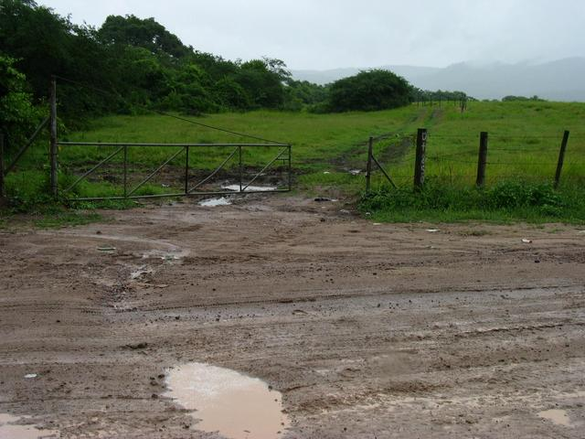 Muddy entrance to the field, 200 meters from the confluence