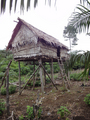 #10: traditional hut in the hills above the confluence