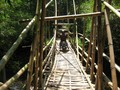 #8: A Stable Bamboo Bridge