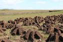 #8: Drying peat