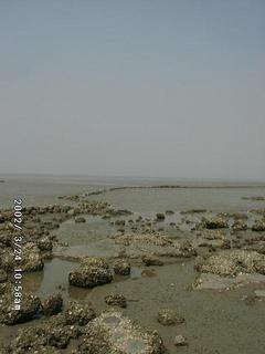 #1: Retreating Sea Tide (Photo in the direction of the point)