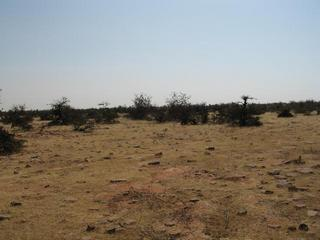 #1: The barren land that surrounds 25N, 76E