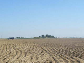 #1: General area - Crop field surrounded by small farms. Confluence Point approx. 50m ahead to the right of the picture.