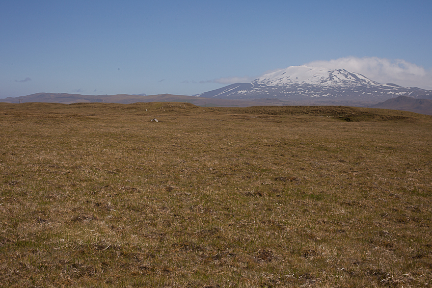 64Nx20W overview from 100 m west of CP, Hekla in background
