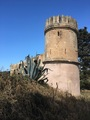 #10: Old tower in 700 m distance