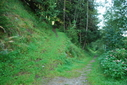 #9: Path up to the CP