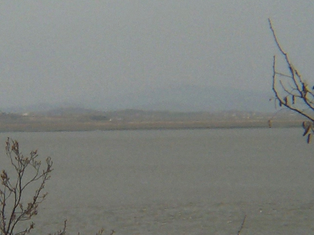 Looking north; this is what one can see when looking east from the confluence point. The small town is faintly visible.