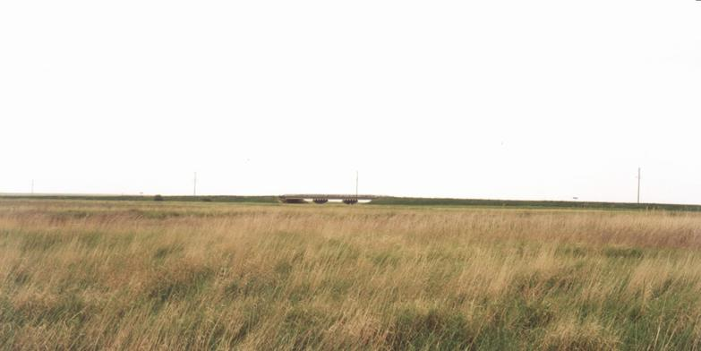The steppe in Kazakhstan is wide.