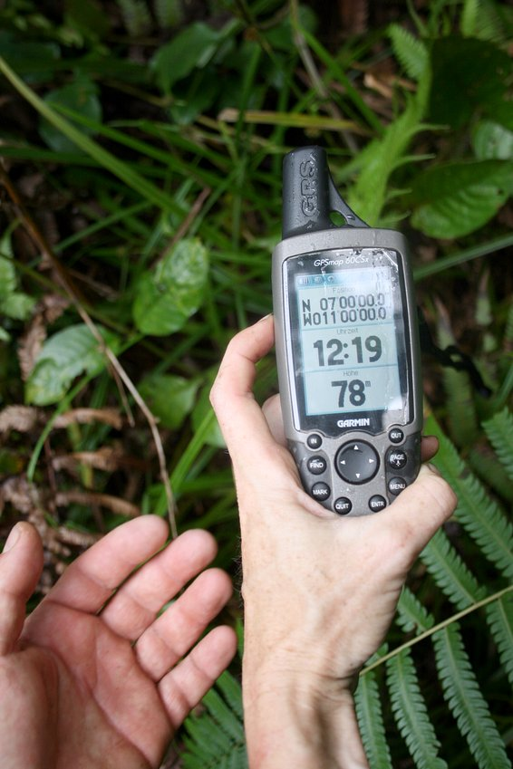 GPS zero in the middle of the swamp
