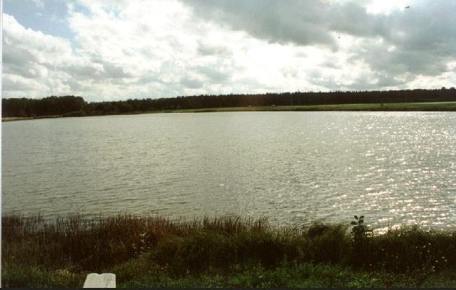 Towards south, the pond.