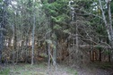 #2: View to the north / Вид на север