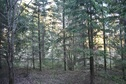 #3: View to the east / Вид на восток