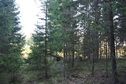#4: View to the south / Вид на юг