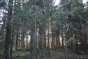 #5: View to the west / Вид на запад