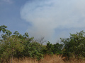 #3: 90m outside scrubs - bushfire eastwards
