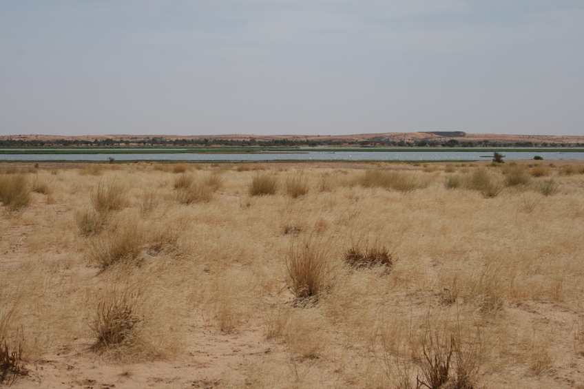 2 km south: Niger River banks